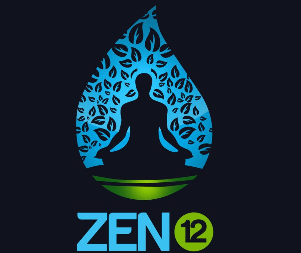Zen12 Review: How Does it Work? Click To Know More About This