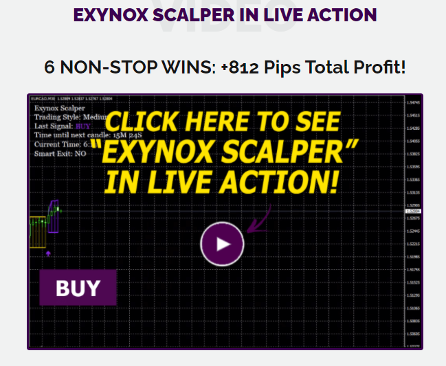 Exynox Scalper Review – Unique To Successful Trading!!